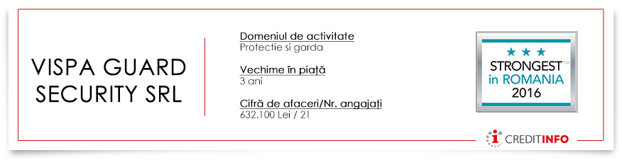 vispa-guard-security